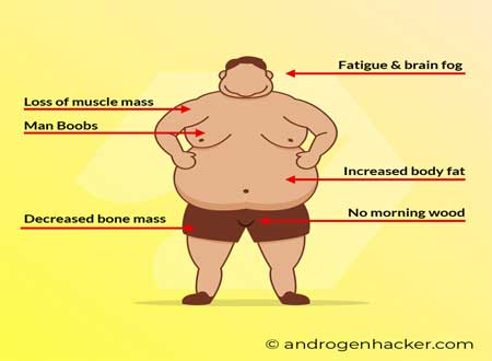 obesity and testosterone replacement therapy